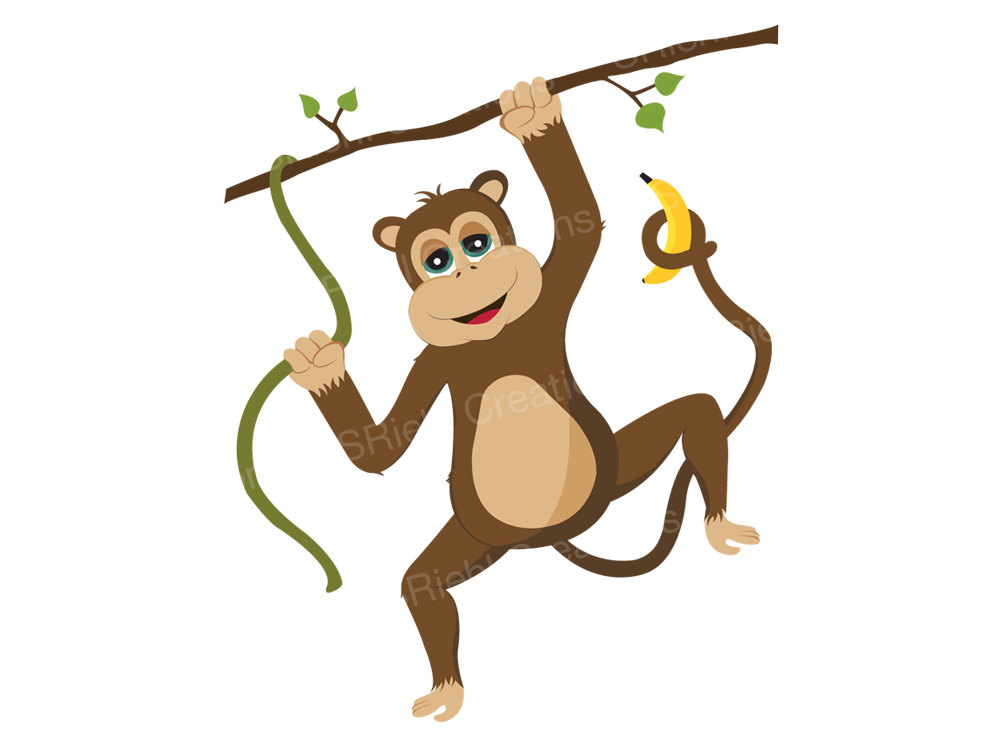 1000x750 Safari Clipart Rainforest Monkey