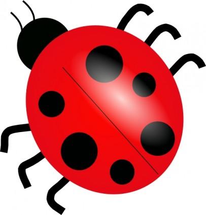 406x425 Drawn Lady Beetle Baby Ladybug