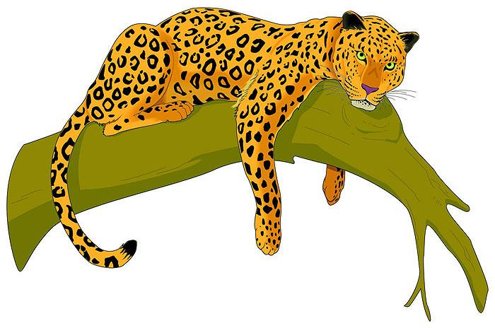 700x464 Top 85 Leopard Clip Art