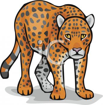 343x350 Top 85 Leopard Clipart