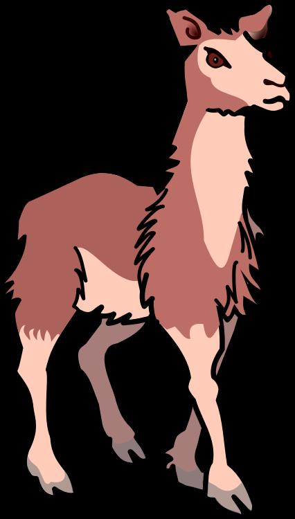 426x750 Lama Clipart Baby Llama