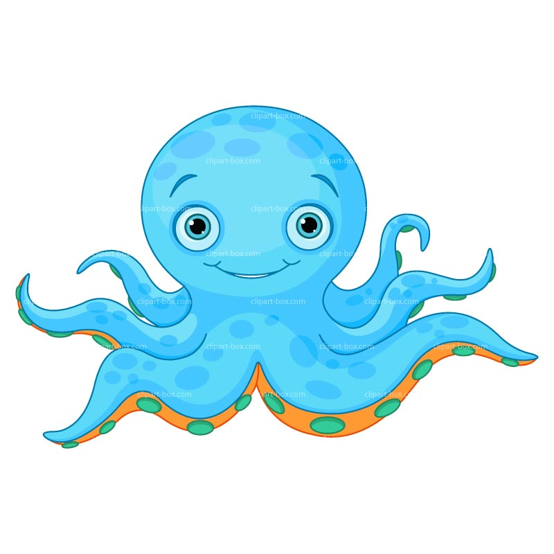 800x800 Octopus Clip Art Images Free Clipart