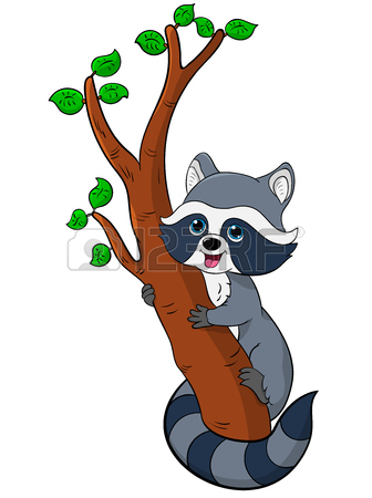 336x450 Top 51 Raccoon Clipart