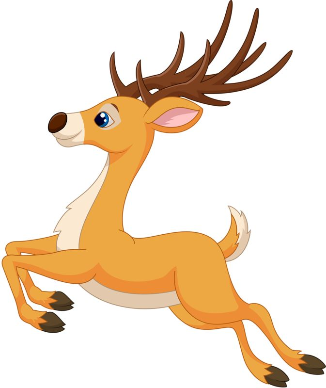 673x800 19 Best Christmas Reindeer Images Pictures, Merry