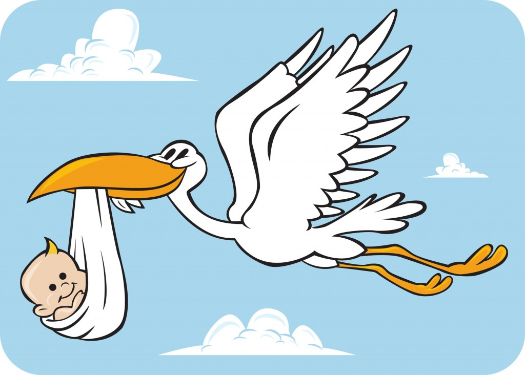 1024x732 Stork Clipart Baby Announcement