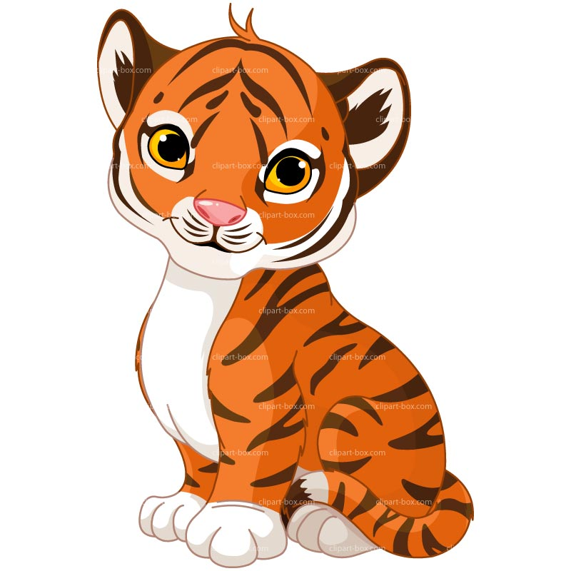 800x800 Baby Tiger Face Clip Art Free Clipart Images 2