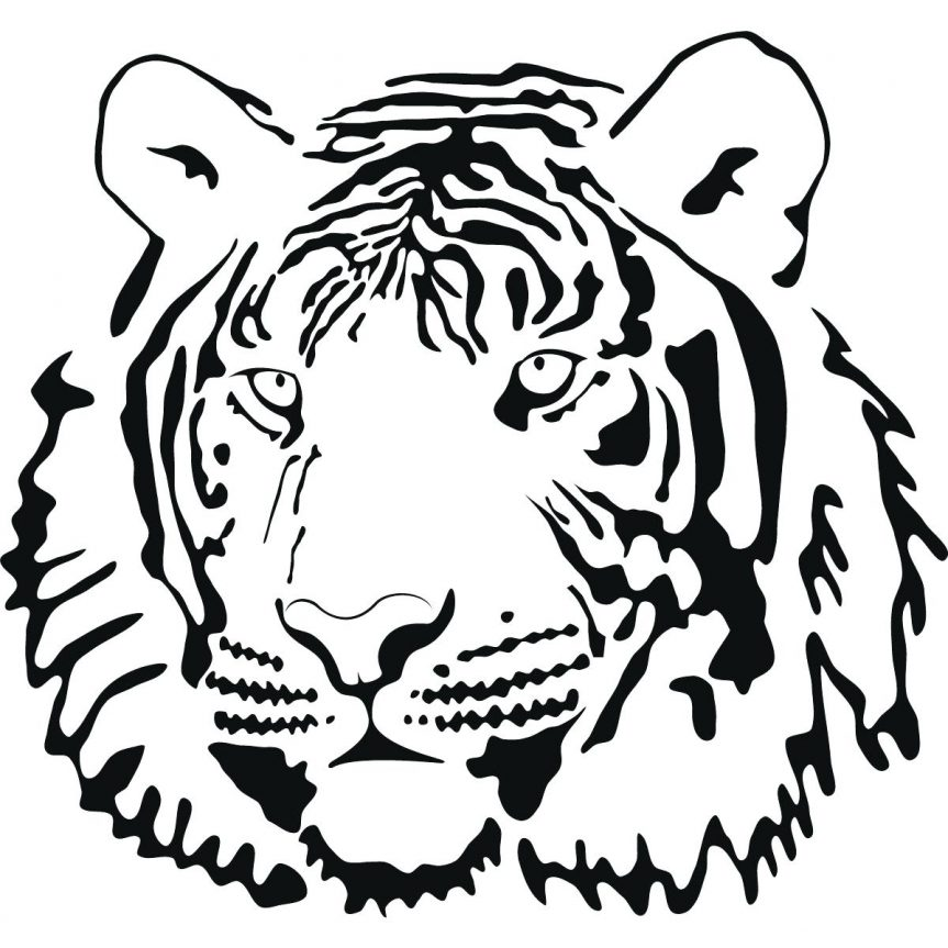 863x863 Best Photos Of Tiger Outline Coloring Page Cute Clip Art Baby