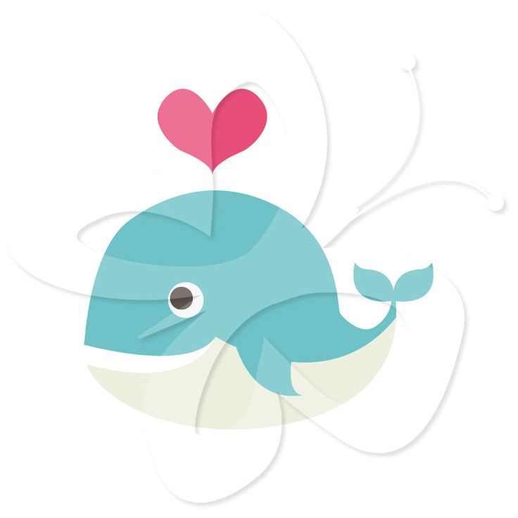 Baby Whale Clipart