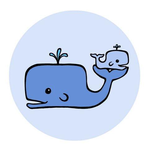 480x480 Whale Clip Art