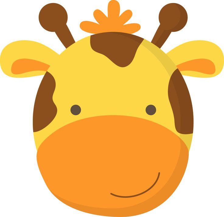 736x714 Baby Animal Clipart Animal Face