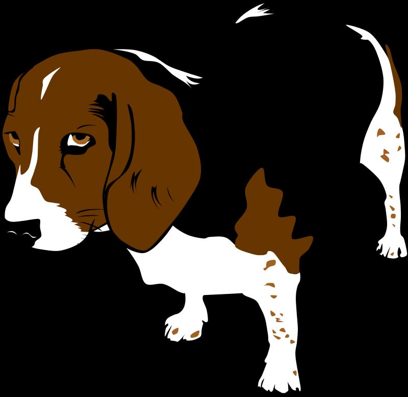 800x778 Free Animal Clip Art