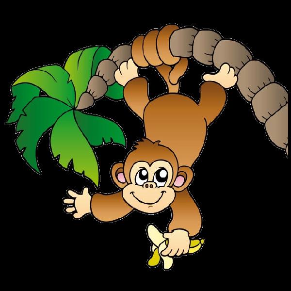 600x600 Zoo Clipart Jungle Monkey