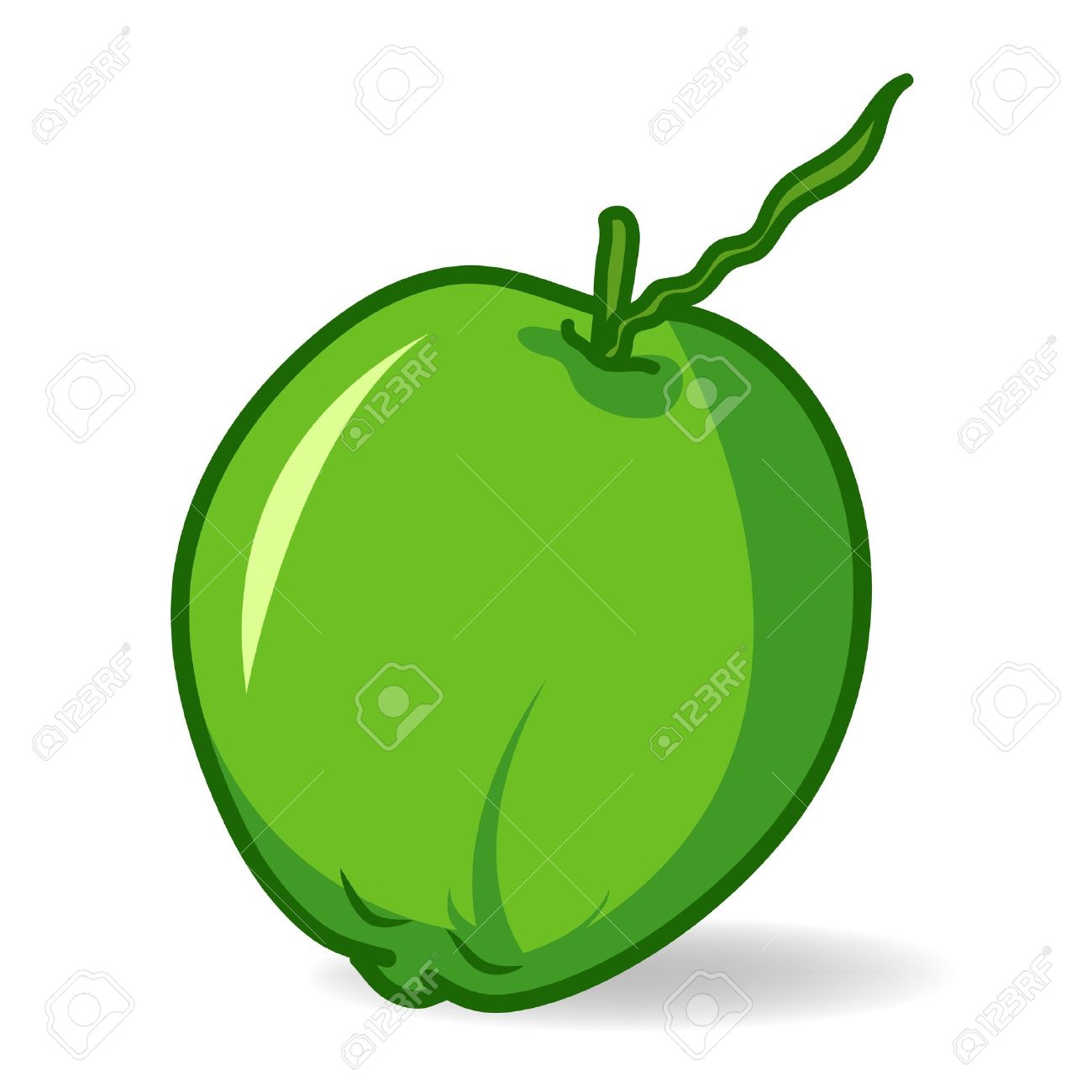 1300x1300 Coconut Clip Art On White Background Royalty Free Cliparts
