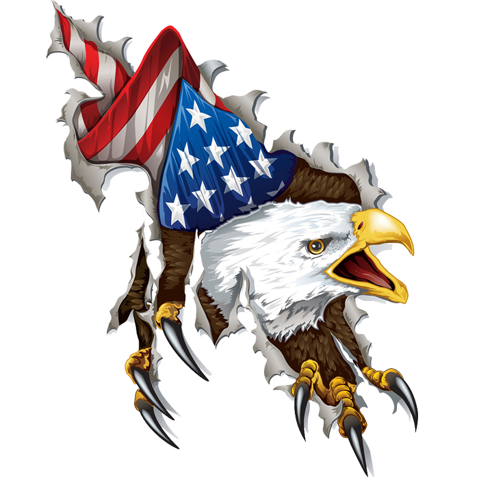 Bald Eagle Png Free Download Best Bald Eagle Png On