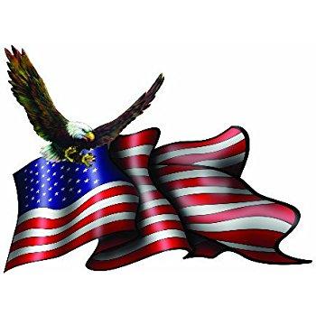350x350 Bald Eagle Clipart United States