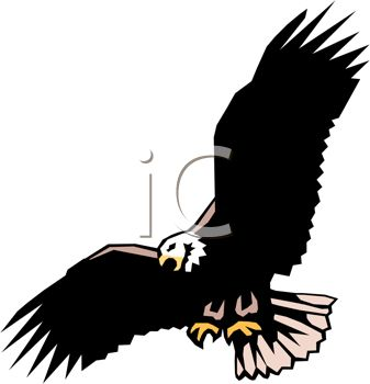 337x350 Picture Of A Bald Eagle Soaring Through The Sky In A Vector Clip