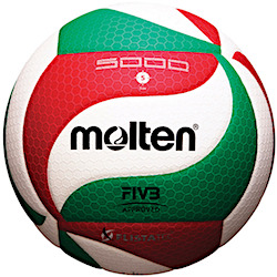250x250 Volleyball Ball Everything You Need To Know About Volleyball