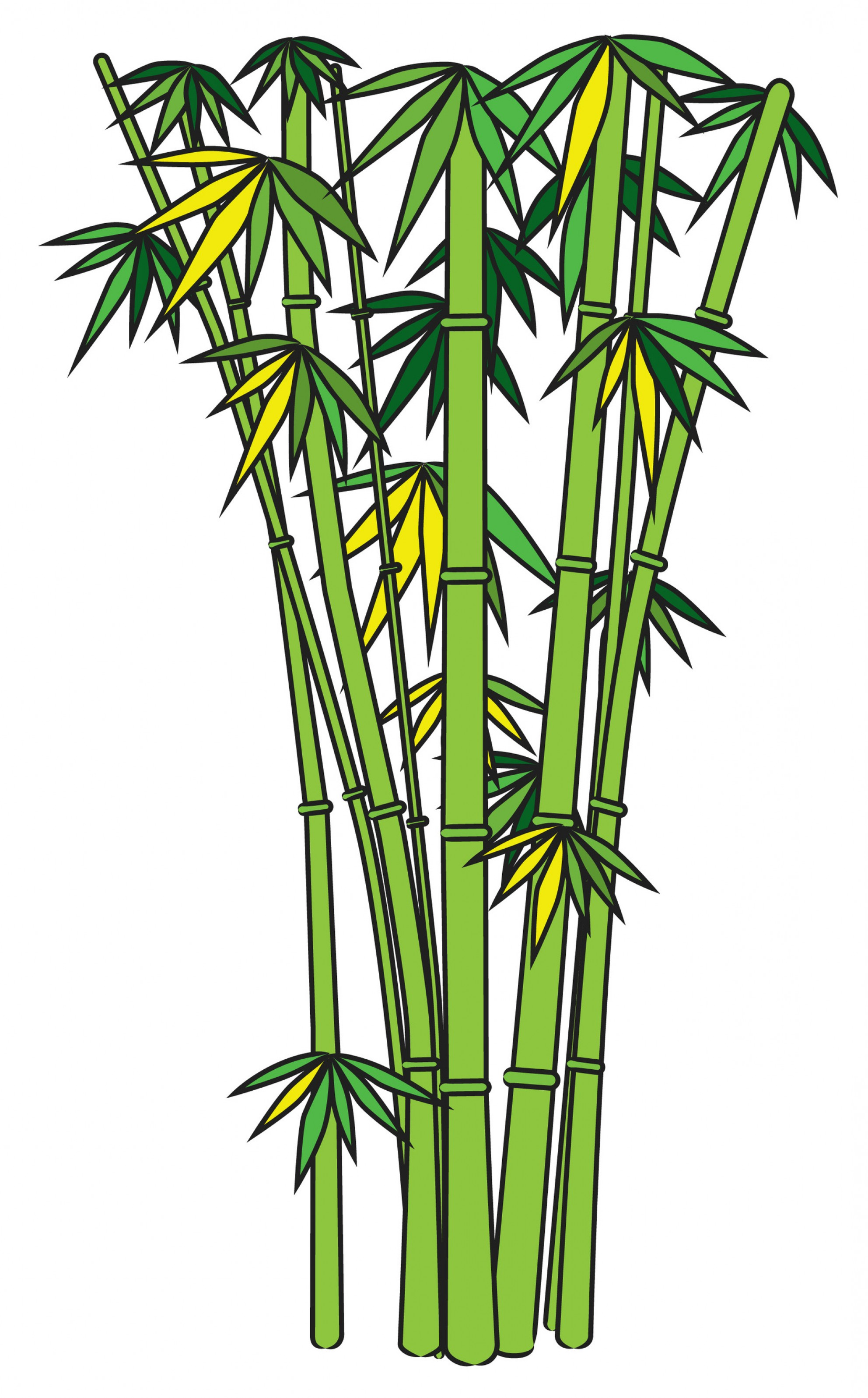 1984x3194 Bamboo Cliparts Free 176990