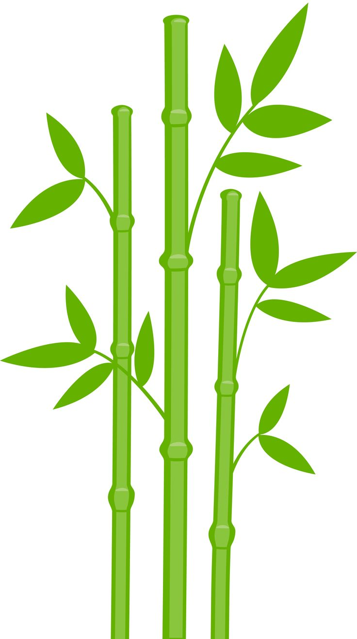 736x1318 Bamboo Border Free Download Clipart 2