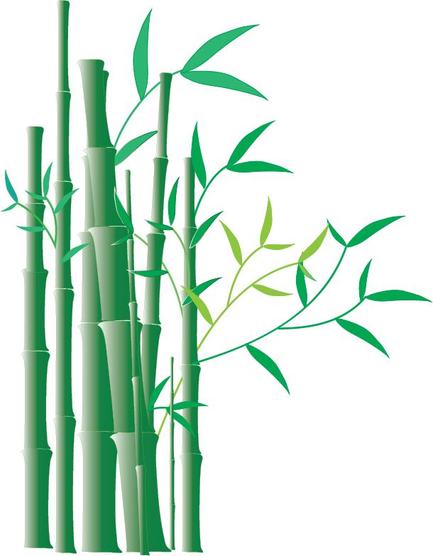 610x783 Bamboo Clip Art Border Clipart