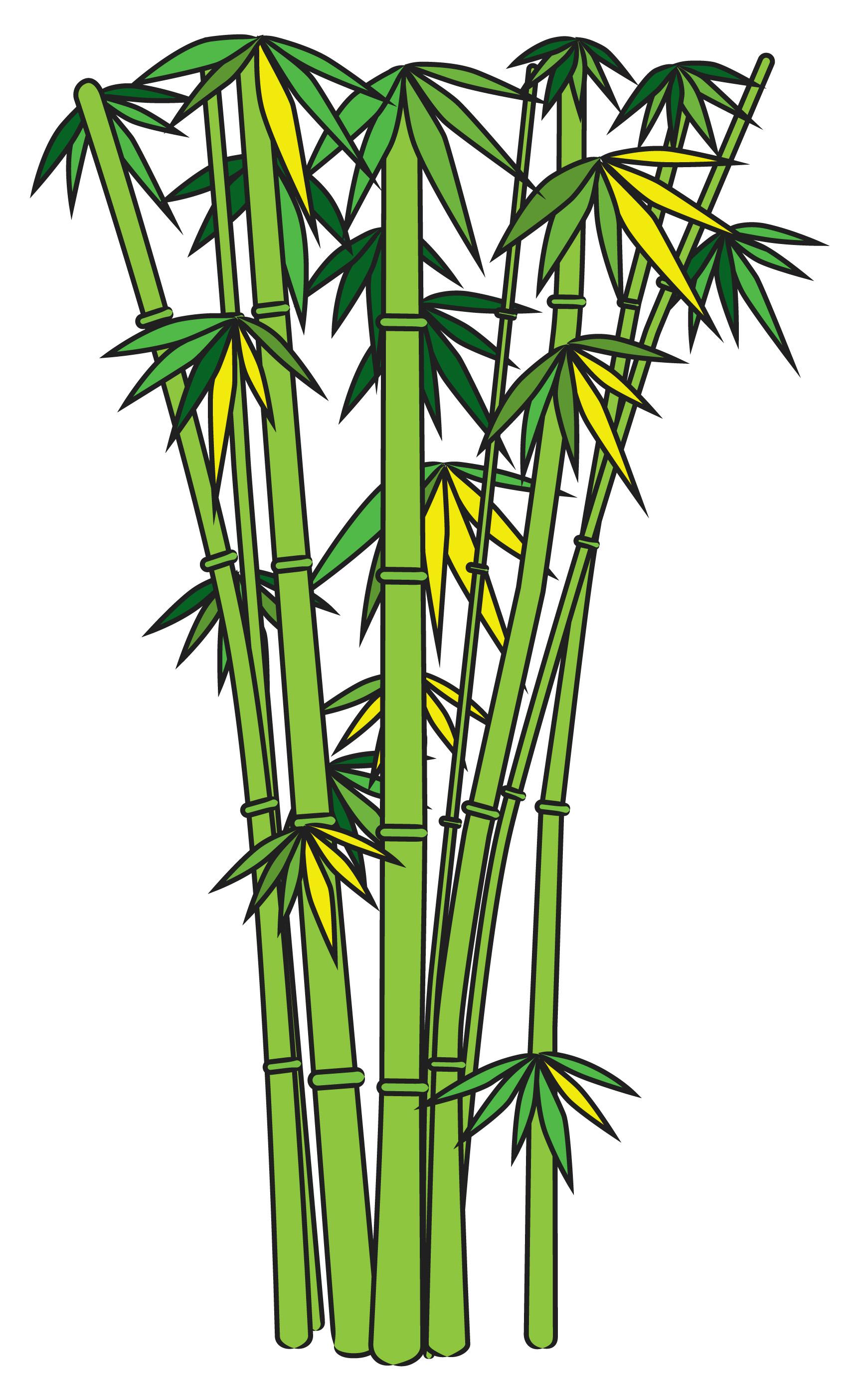 1741x2802 Bamboo Clip Art The Cliparts