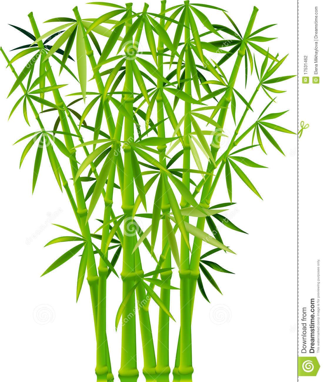 1102x1300 Bamboo Clipart Bamboo Tree