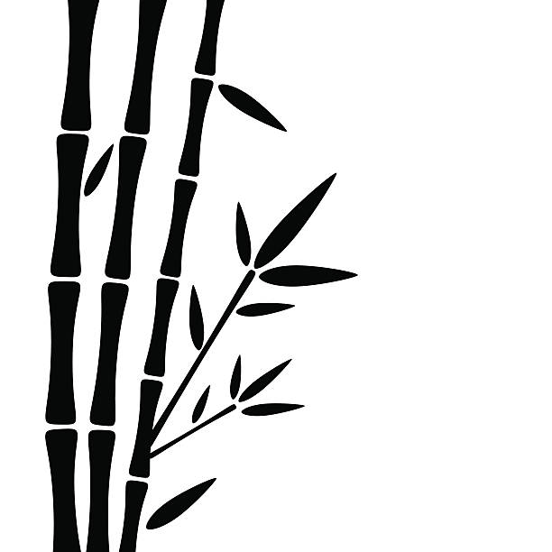 612x612 Bamboo Clipart Silhouette