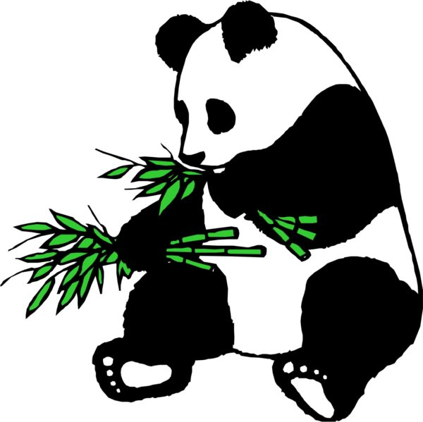 600x599 Free Panda Bamboo Clipart Image