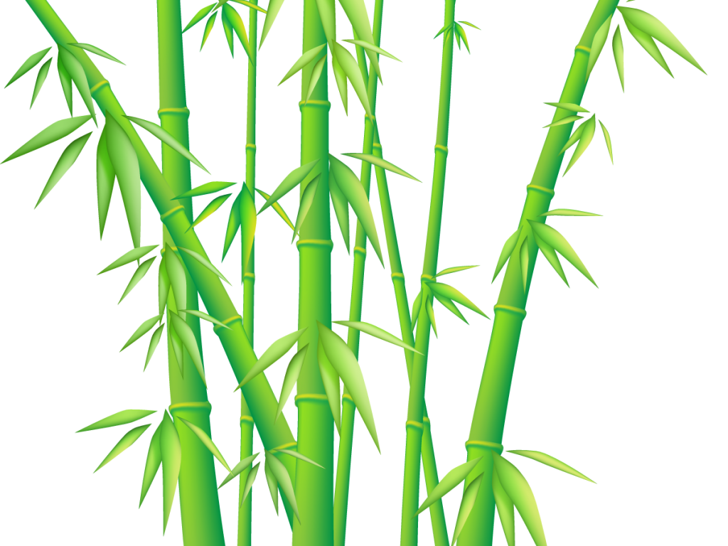 1024x768 Marvellous Design Bamboo Clip Art Download Free Png Photo Images