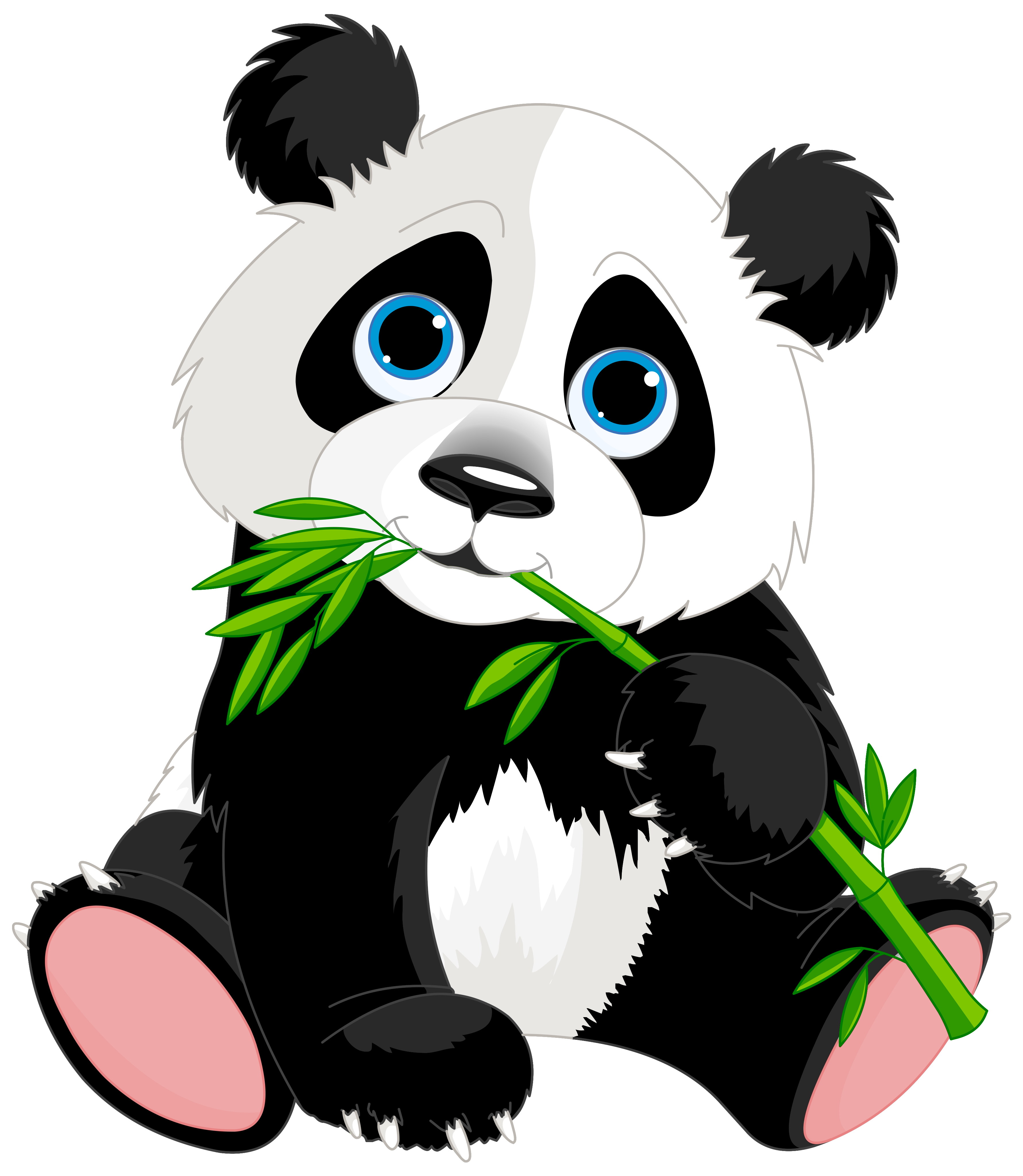 3562x4094 Panda Bamboo Clipart Free Clipart Images Clipartbold 2