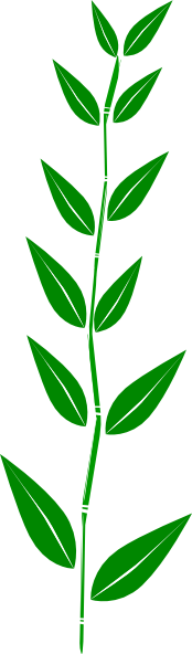 174x592 Bamboo Clip Art