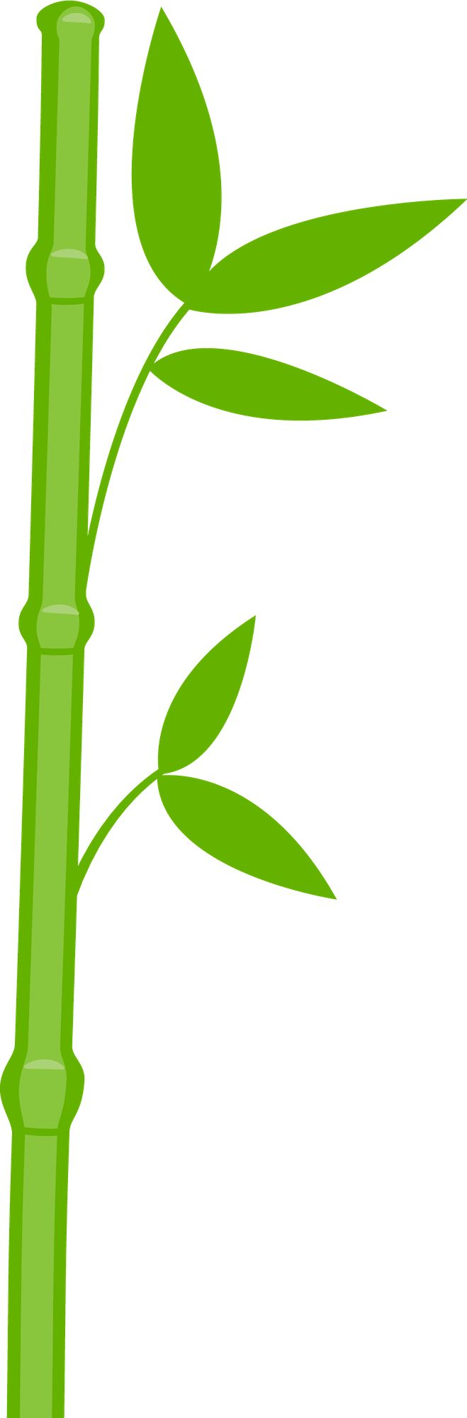 659x2000 Bamboo Clipart Stem