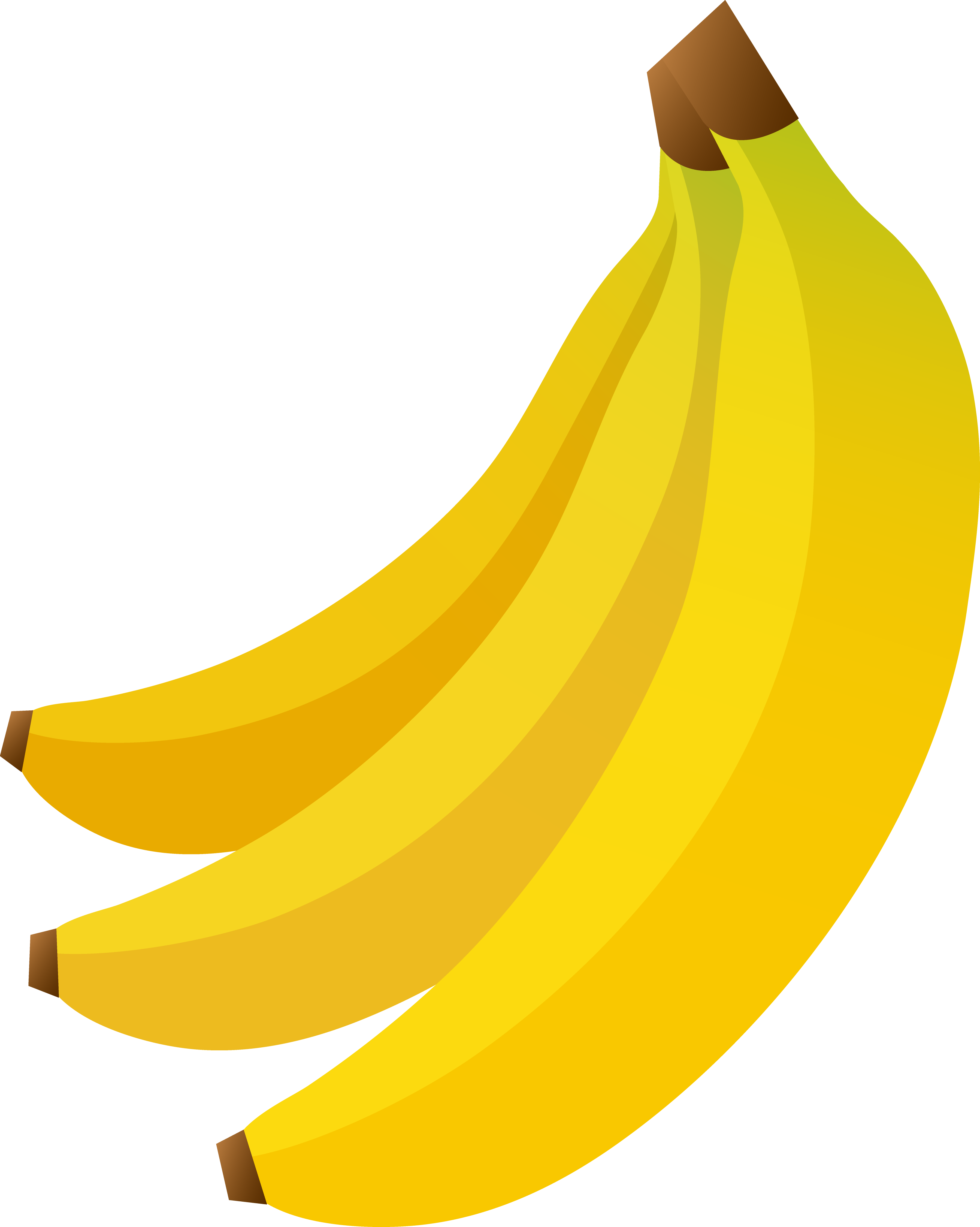 3596x4501 Banana clipart