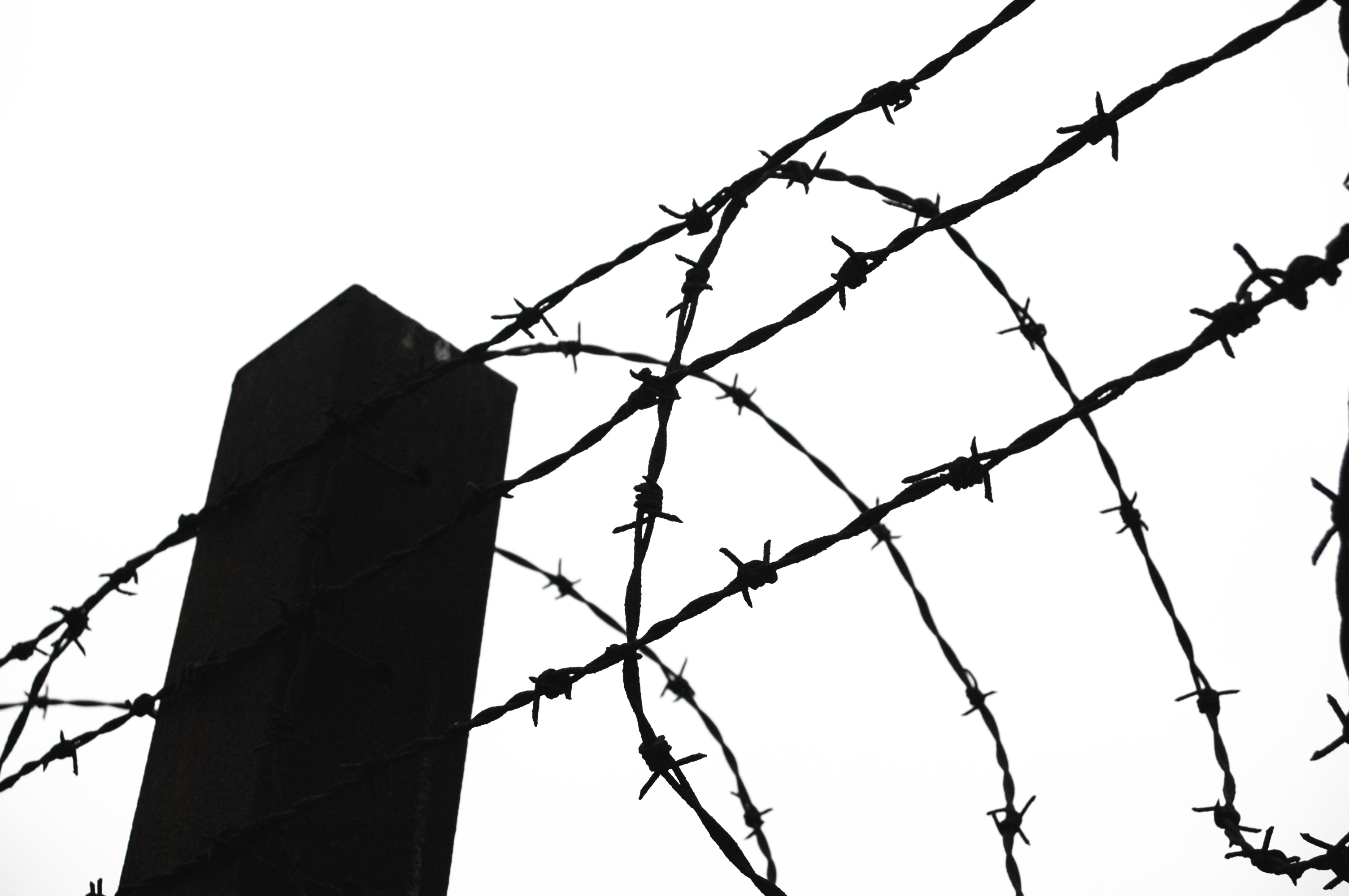 3008x2000 Barb Wire Clipart Barbed Wire