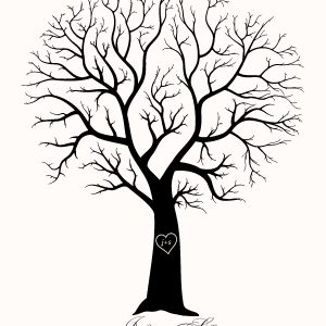 bare trees clipart free download best bare trees clipart on