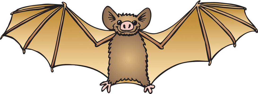 1092x400 Bat Clipart Black And White Free Images 3