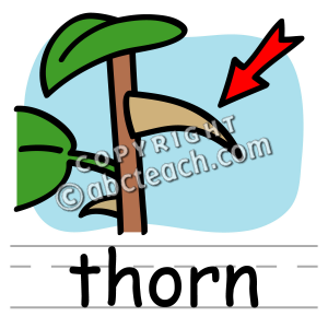 Basic Words Clipart