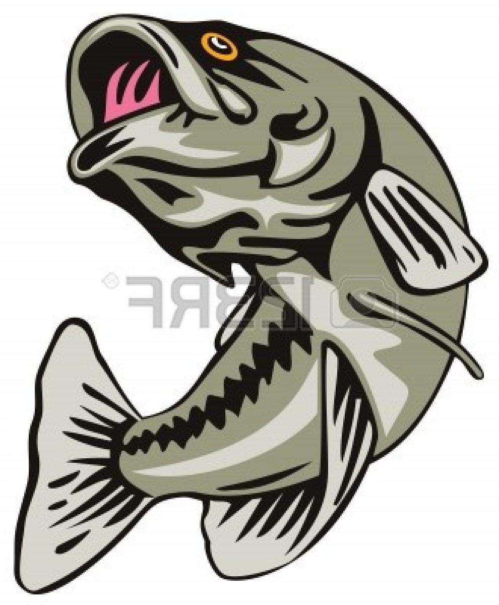990x1200 Hd Jumping Bass Fish Clip Art Largemouth Bas Photos