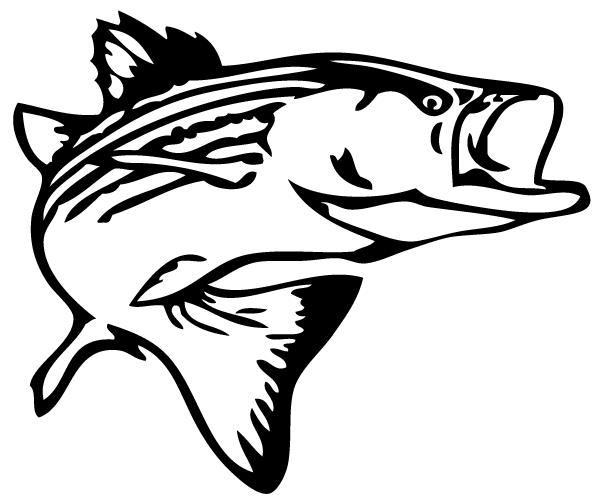 600x499 Bass Fish Outline Clip Art 2
