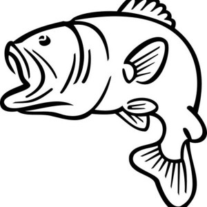 300x300 Bass Fish Jumping Outline Sketch Coloring Page Dad39s 70th