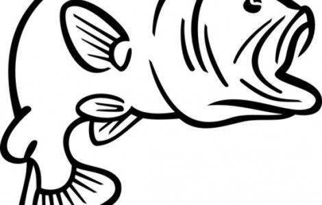 Bass Fish Outline Free download