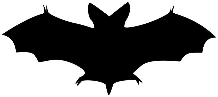 850x377 Templates Clipart Bat