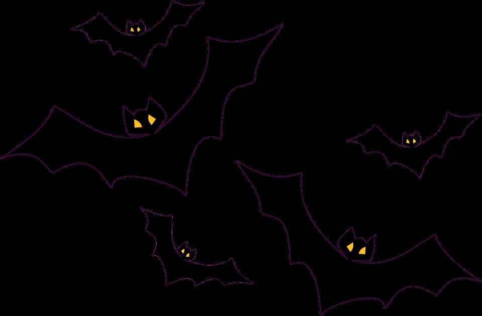 960x630 Bat Graphic Group