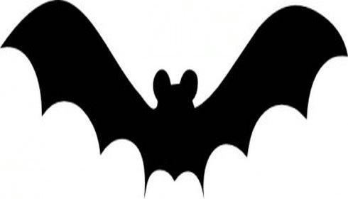 490x280 Templates Clipart Bat