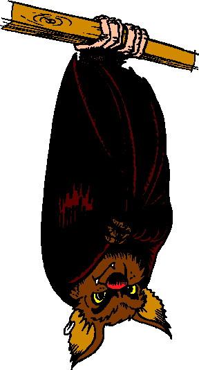 288x534 Bats Clip Art Clipart Panda
