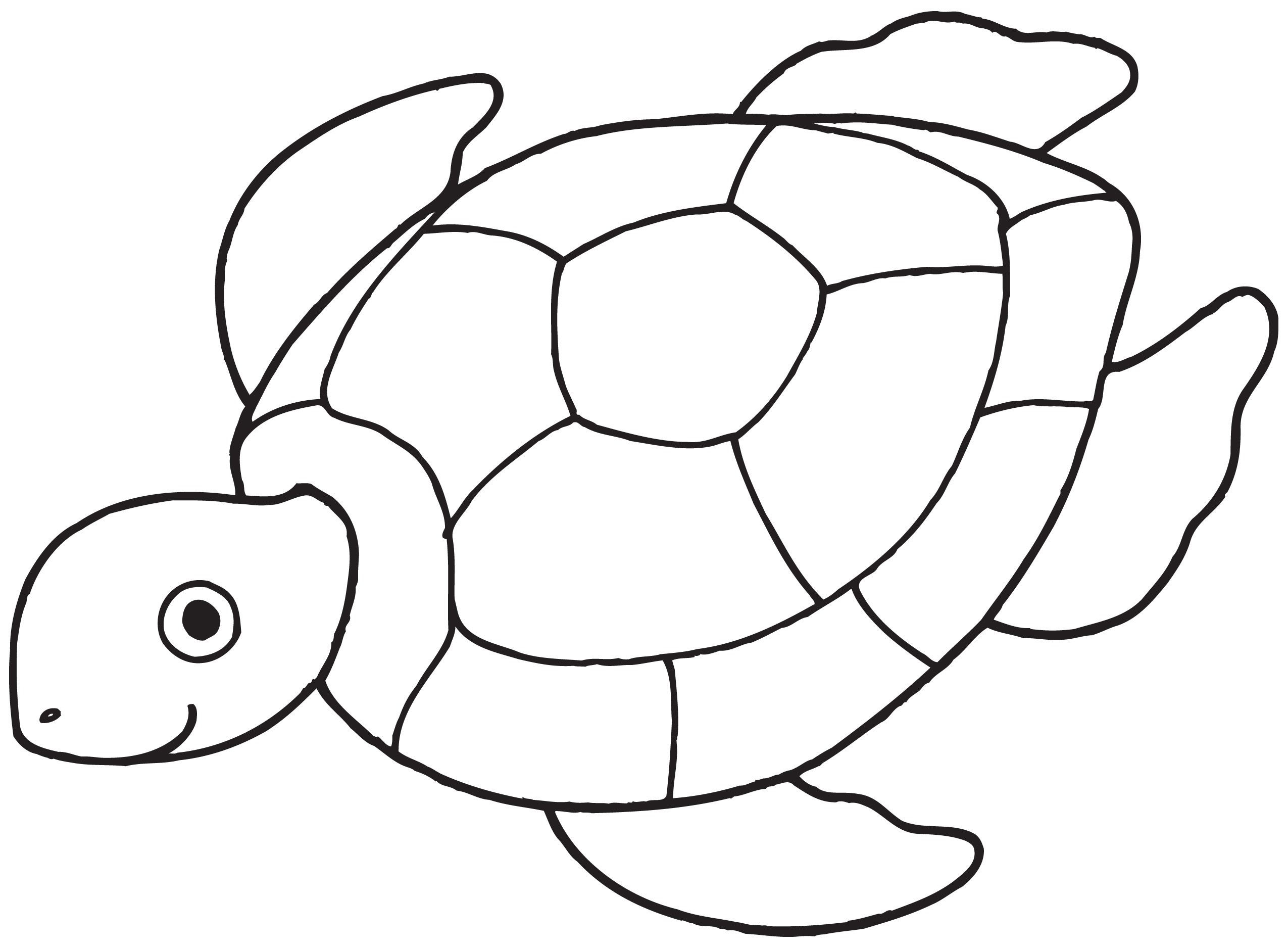 2550x1876 Free Turtle Clipart Black And White Image