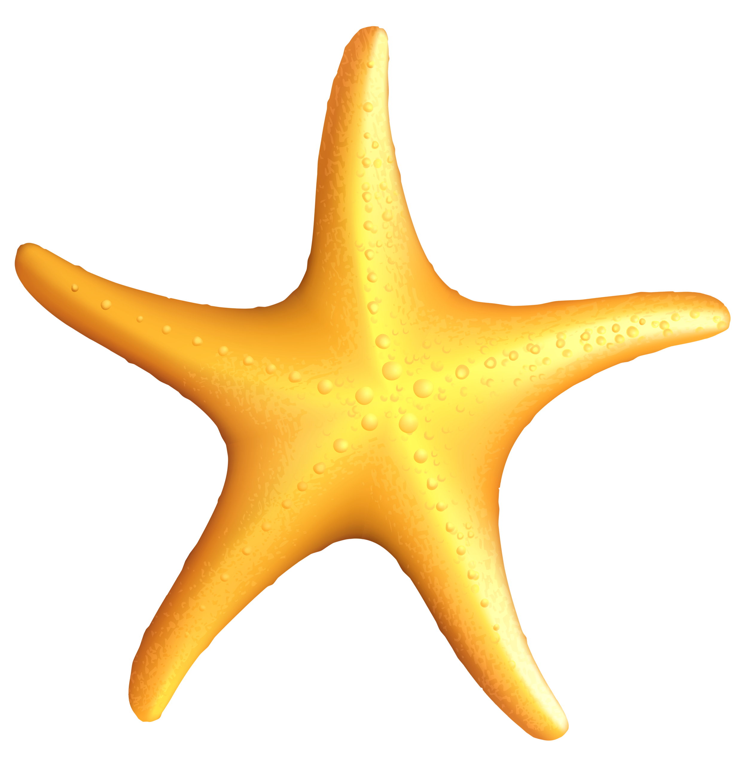 2488x2558 Transparent Beach Starfish Png Clipartu200b Gallery Yopriceville