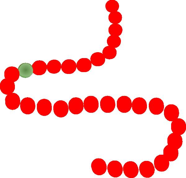 600x573 Beads Clip Art