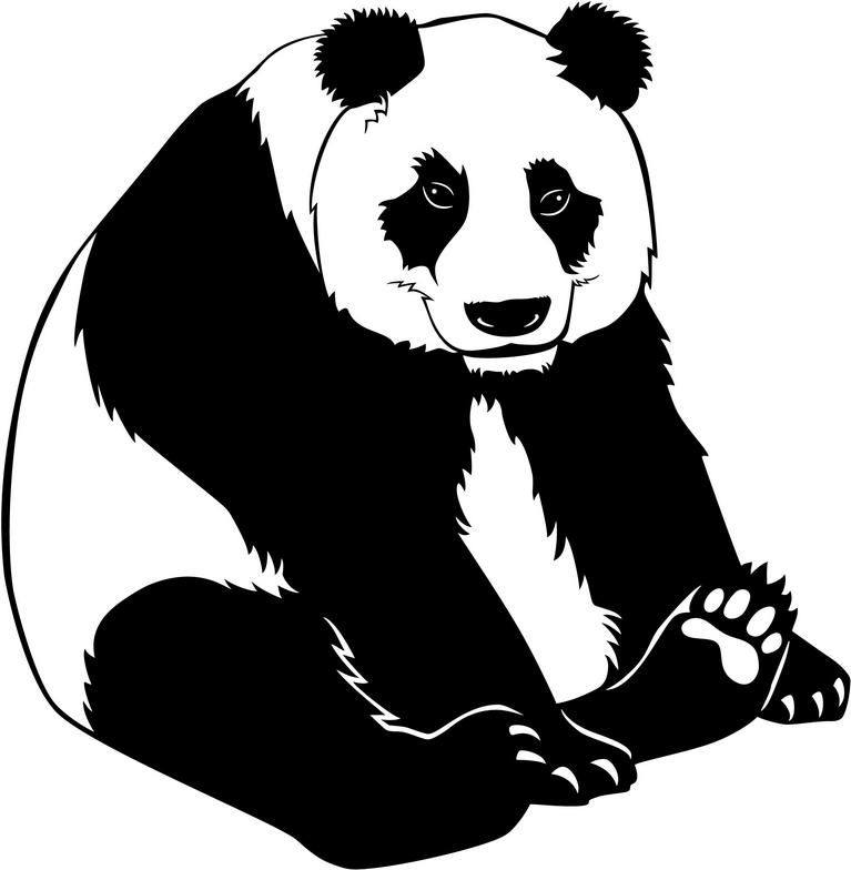 767x784 Bear Black And White Cute Panda Clipart Black And White Clipartfox