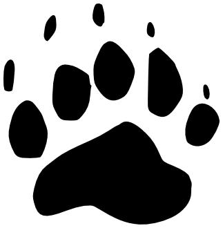 323x330 Black Bear Track